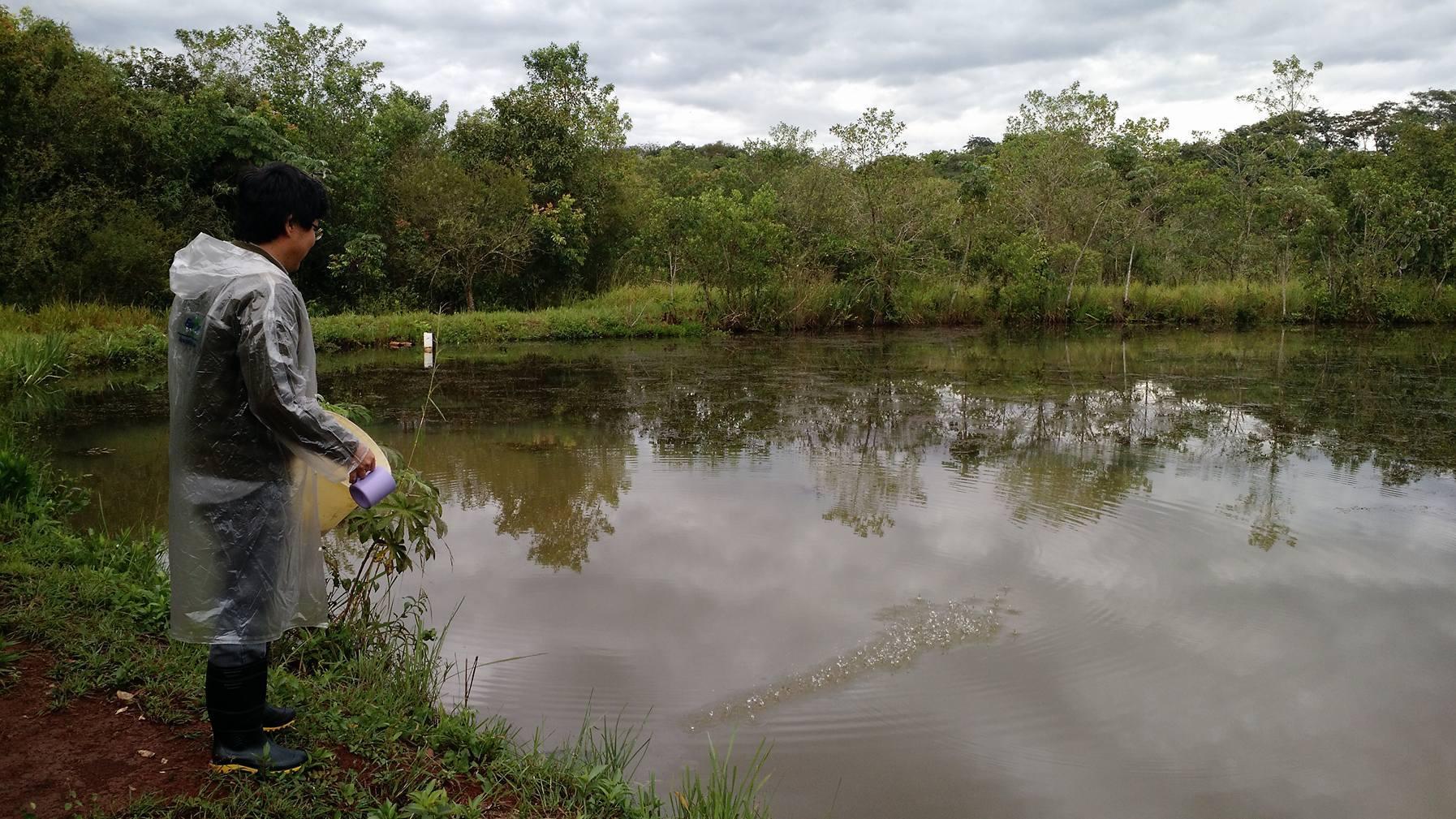 Piscicultura qualidade e temperatura da gua s o for Elaboracion de estanques para piscicultura